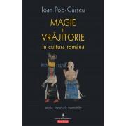 Magie si vrajitorie in cultura romana. Istorie, literatura, mentalitati (eBook)