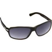 Tommy Hilfiger Round Sunglasses(Violet)