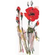 Fototapet FTV 0030 Art Poppy