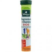 Kneipp GmbH KNEIPP Magnesium+Vitamine Brausetabletten 20 St