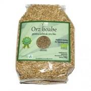 Orz boabe pentru iarba de orz bio 500g