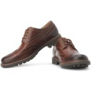 Clarks Montacute Wing Corporate Casuals For Men(Brown)