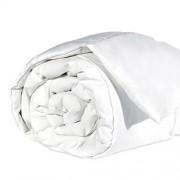 Couette lavable Proban - 200 x 200 cm