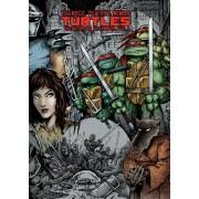 Teenage Mutant Ninja Turtles: The Ultimate Collection, Volume 1