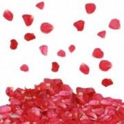 Tun confetti petale trandafiri 60 cm pentru evenimente speciale