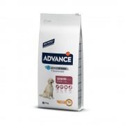 Affinity Advance Advance Maxi + 6 Senior con pollo y arroz - Pack % - 2 x 14 kg