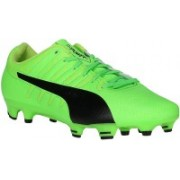 Puma evoPOWER Vigor 4 FG Football Shoes For Men(Green)