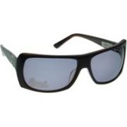 Animal Round Sunglasses(Grey)
