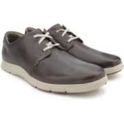 Clarks Milloy Vibe Dark Brown Lea Sneakers For Men(Brown)