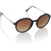 Fastrack Aviator Sunglasses(Brown)