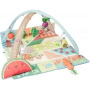 Skip Hop Farmstand Babygym