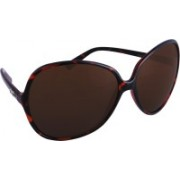 D&G Oval Sunglasses(Brown)