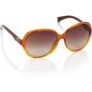 CK Jeans Over-sized Sunglasses(Brown)