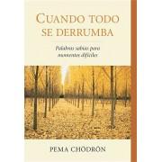 Cuando Todo Se Derrumba (When Things Fall Apart): Palabras Sabias Para Momentos Dificiles, Paperback/Pema Chodron