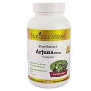Arjuna 500mg Pure Extract 60 Veg Capsules By Natures Velvet