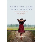 While the Gods Were Sleeping: A Journey Through Love and Rebellion in Nepal, Paperback