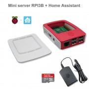 Raspberry Mini server RPI3B + Home Assistant