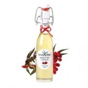 Soaphoria Organický kosmetický olej Ricinový (Castor Oil) 50 ml