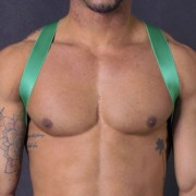 Leader Barcelona X Back Harness Green