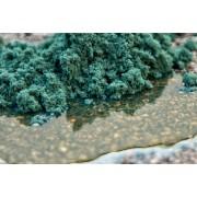 Absorbente universal concentrado polvo rudglas 34lt saco