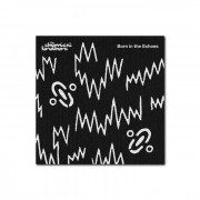 Universal Music Chemical Brothers - Born In The Echoes - CD