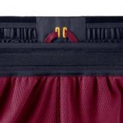 Мужские шорты NBA Cleveland Cavaliers Nike Icon Edition Authentic