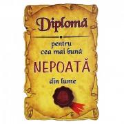 Magnet Diploma pentru Cea mai buna NEPOATA din lume, lemn