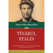 Tinarul Stalin (eBook)