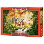 Puzzle Familie Roiala, 1000 piese