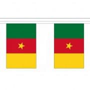 Merkloos Kameroen vlaggenlijn 9 m