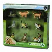 Set 9 figurine Catei si Pisici Collecta, pictate manual