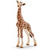 Schleich Giraffe Calf, Multi Color