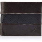 Fastrack Men Casual Brown, Black Artificial Leather Wallet(4 Card Slots)