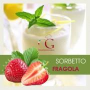Officine Gastronomiche Sorbetto Fragola 20 buste da 1 kg