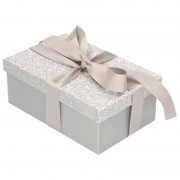 Geen Kerstboom cadeautje zilver glitter doosje 24 cm