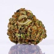 CBD Blüten Strolz 5g+1g GRATIS