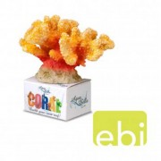 EBI AQUA DELLA CORAL MODULE M cauliflower coral orange-yellow 12x10,2x8cm