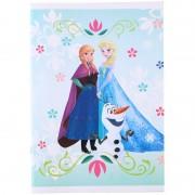 Disney A4 Frozen schriften met lijntjes