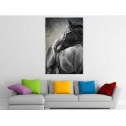 "Tablou grand canvas ""Painting portrait of a horse"" - cod Z27"