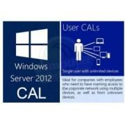 Software OEM WinSvr CAL 2012 Eng 1 User CAL, R18-03737