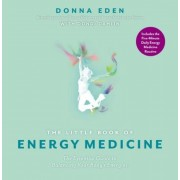 The Little Book of Energy Medicine, Paperback