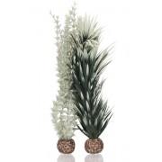 biOrb střední rostlina Ambulie šedo - zelená