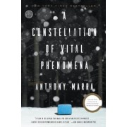 A Constellation of Vital Phenomena, Paperback