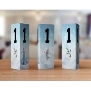 Numere de masa cu Elsa şi Olaf