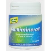 Multiminerali