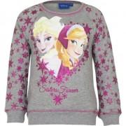 Disney Frozen trui grijs voor meiden