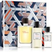Hermès Terre d'Hermès coffret XXIV. Eau de Toilette 100 ml + gel de duche 80 ml + loção after shave 40 ml