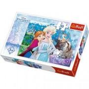 Puzzle Frozen Elsa Anna Olaf Sven si Kristoff 30 pcs 18225 Trefl