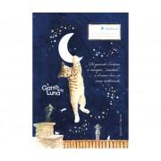 Bruer Il Gatto E La Luna