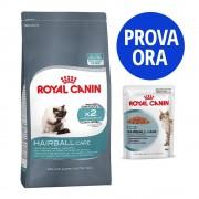 Royal Canin Set assortito Royal Canin per boli di pelo - Indoor Long Hair